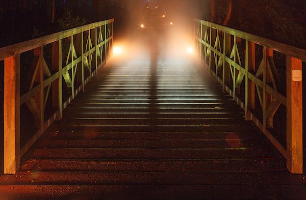 Nebelbrücke 2013 II