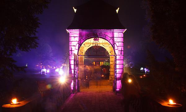 Hochzeitsbrücke VI
