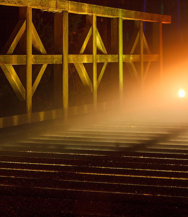 Nebelbrücke 2013 III