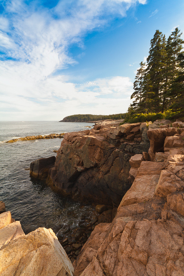 Newport Cove, Acadia National Park II