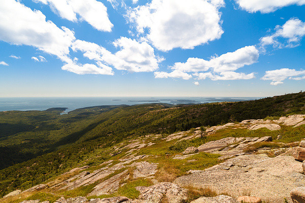 Cadillac Mountain, Acadia National Park II