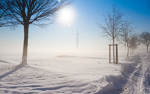 Winter Nebel Sonne