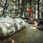 Besuch im Autoskulpturenpark Neandertal