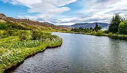 Blick auf die Ebene von Þingvellir
