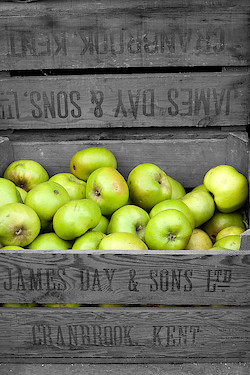 Kiste mit Äpfeln in Greenwich