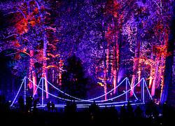"""Die Brücke aus Licht """"Arcadia"""" I"""