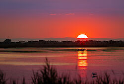 Sonnenuntergang über einem Étang