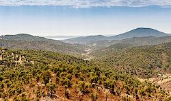 Sanfte Hügel der Provence
